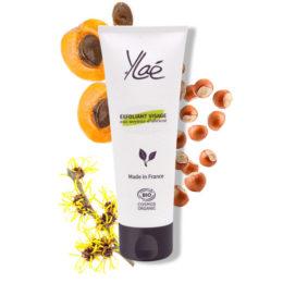 Exfoliant naturel visage aux noyaux d'abricot