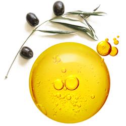 ingrédients phares l'huile d'olive