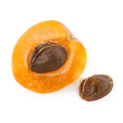 ingredientes granos de albaricoque